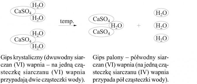 Gips krystaliczny (dwuwody siarczan (VI) wapnia - na jedną cząsteczkę siarczanu (VI) wapnia przypadają dwie cząsteczki wody). Gips palony - półwodny siarczan (VI) wapnia (na jedną cząsteczkę siarczanu (IV) wapnia przypada pół cząsteczki wody).